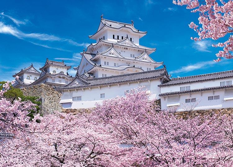 さくら名所100選に選ばれている姫路城