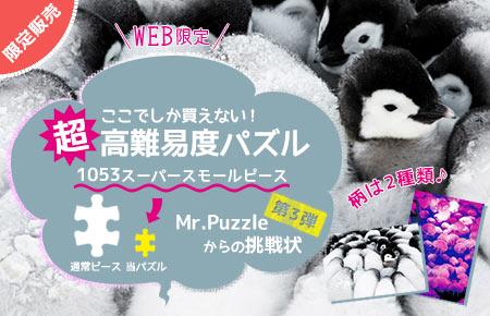 限定パズル Mr.Puzzleからの挑戦状 Vol.3