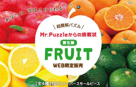 Mr.Puzzleからの挑戦状 Vol.5