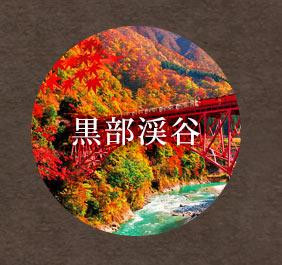 風景 紅葉の黒部峡谷とトロッコ電車 600ピース