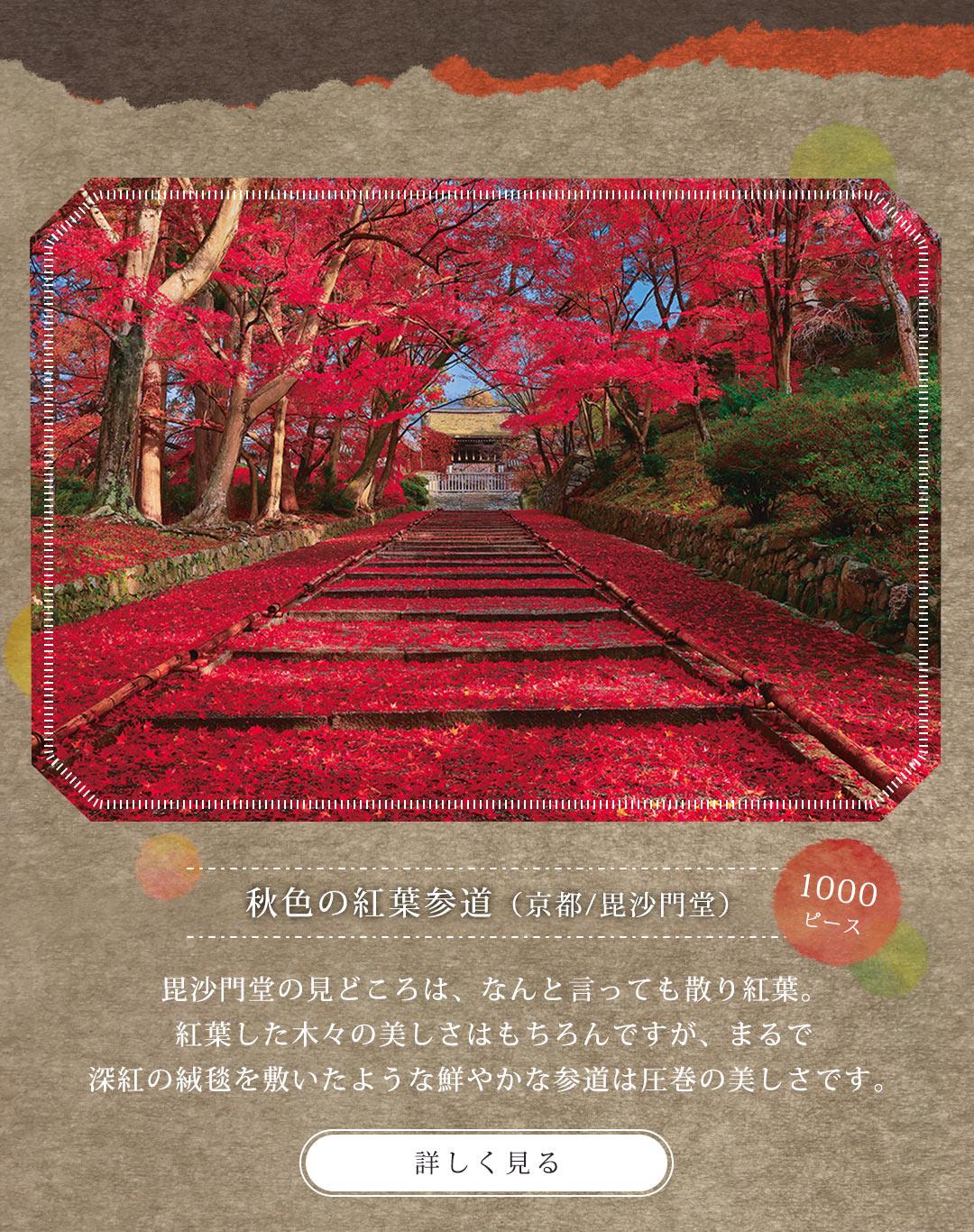 風景 秋色の紅葉参道(京都) 1000ピース